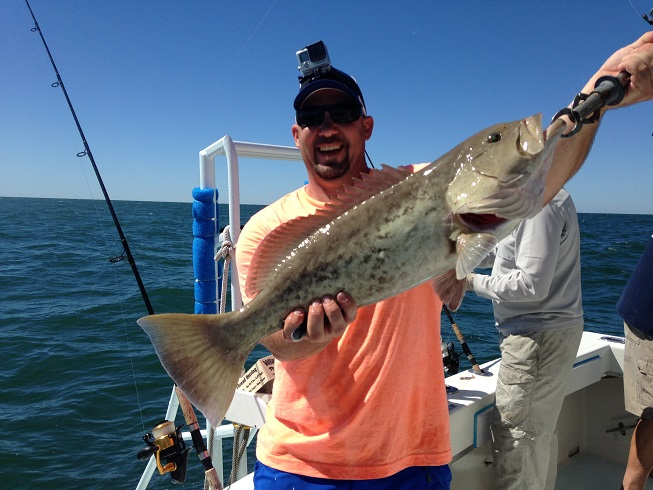 November 2016 offshore charter fishing update for Fishing lure selector