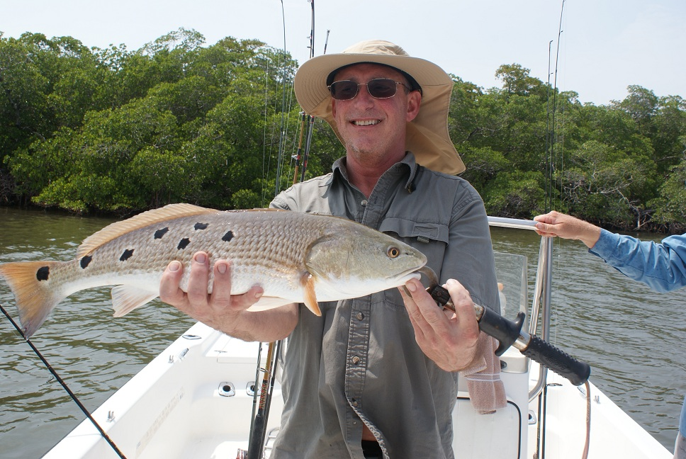 Fort myers florida charter fishing guide homepage for Fort myers florida fishing
